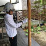 カエツハウス 本田邸_1